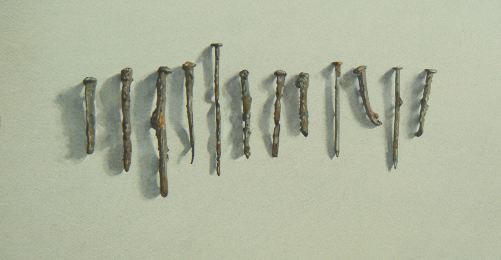 A dozen rusty nails  23 x 44cm  Watercolour by Lillias August ©