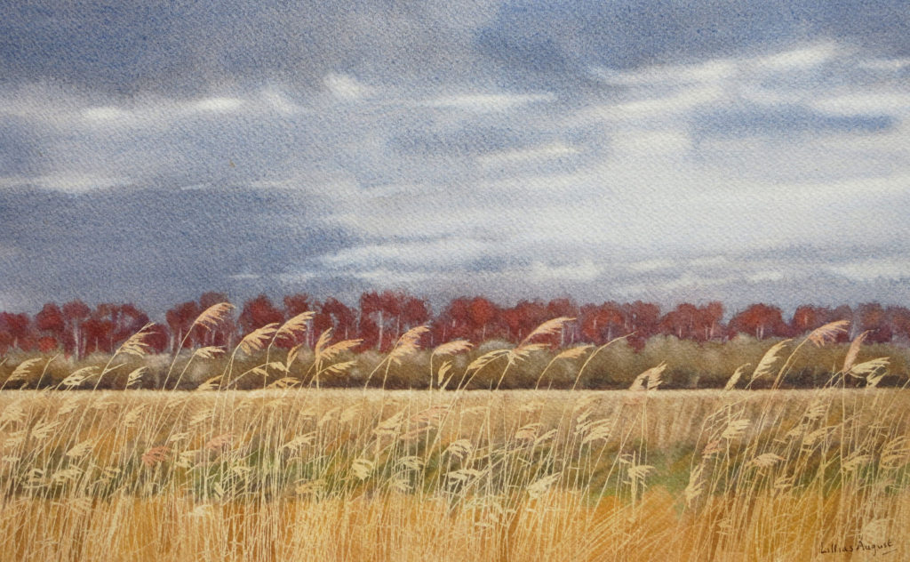 Across the fen 19.5 x 32cm