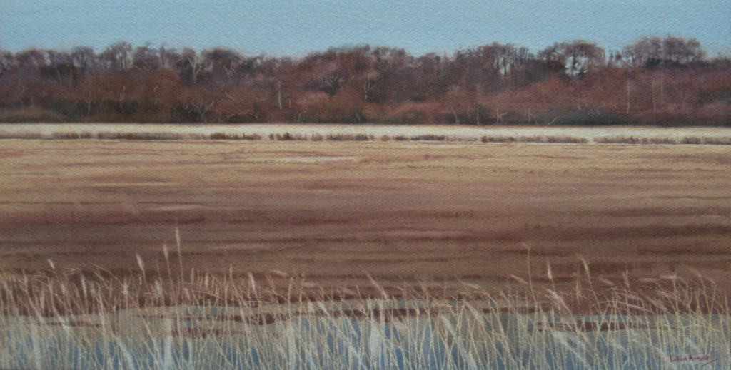 Across the reeds 22 x 43cm