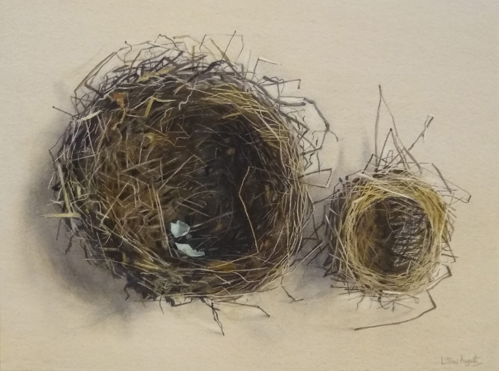 Big nest, little nest 24.5 x 33cm