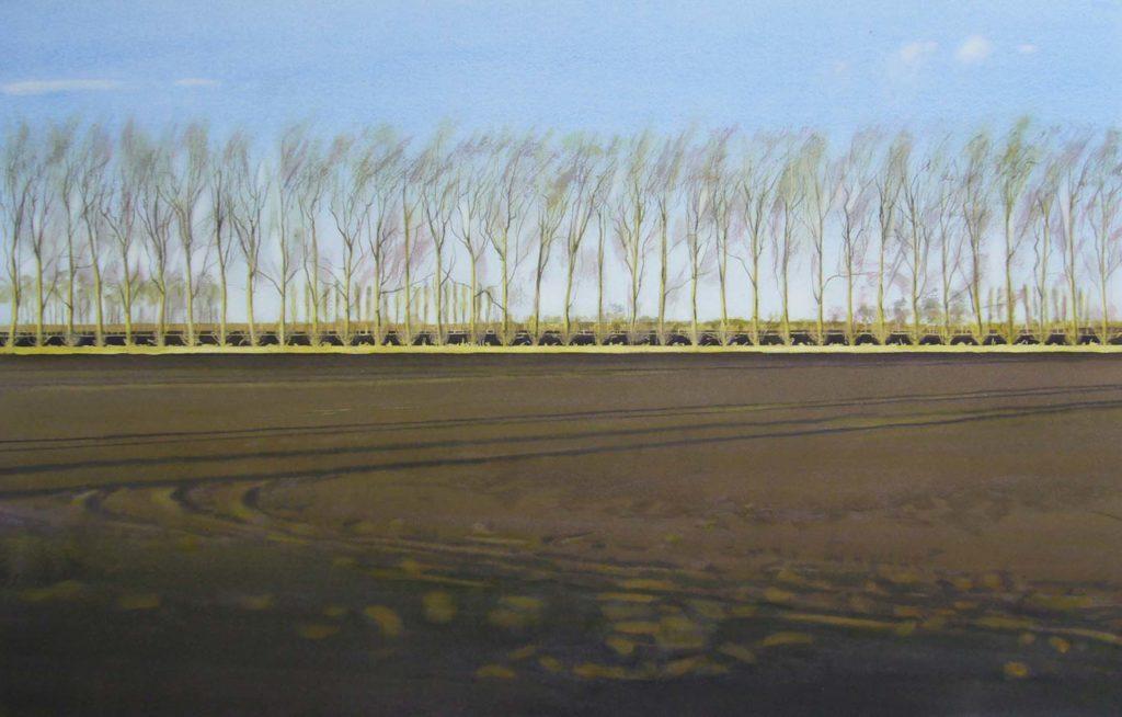 Black earth poplars 45 x 71cm