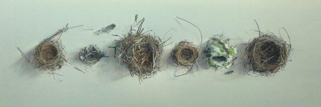 Empty nests 31 x 94cm
