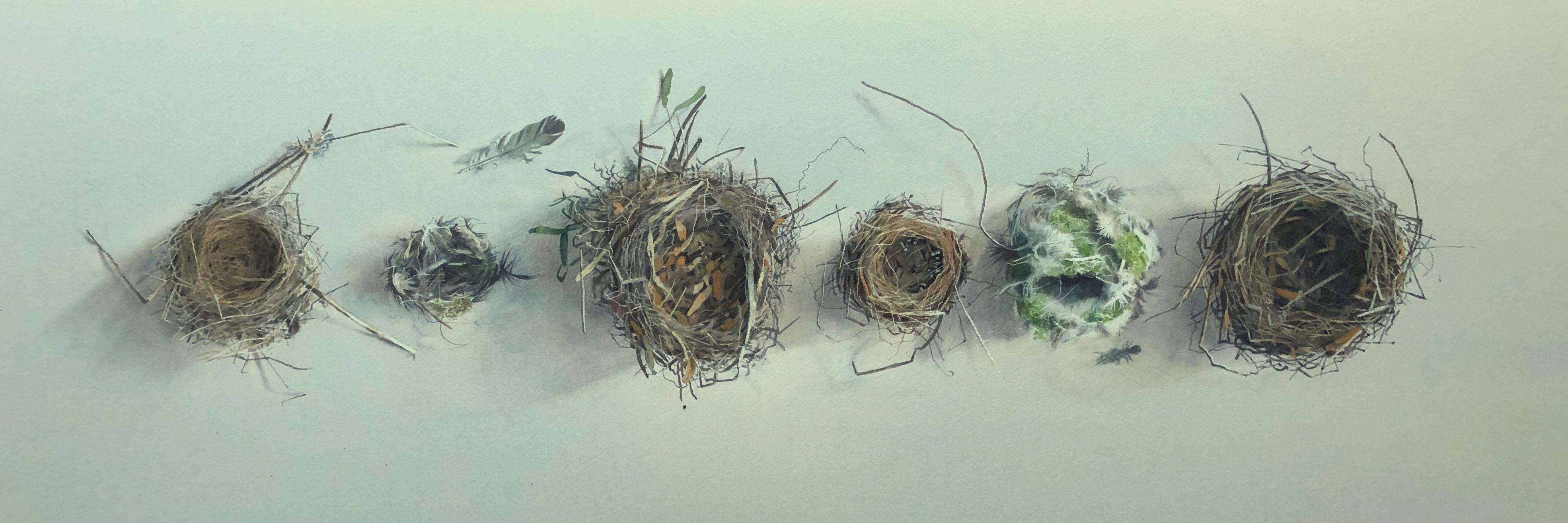 Empty nests 31 x 95cm