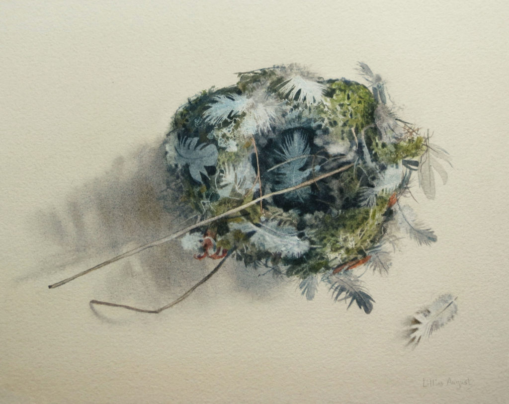 Feathered nest 23 x 29cm
