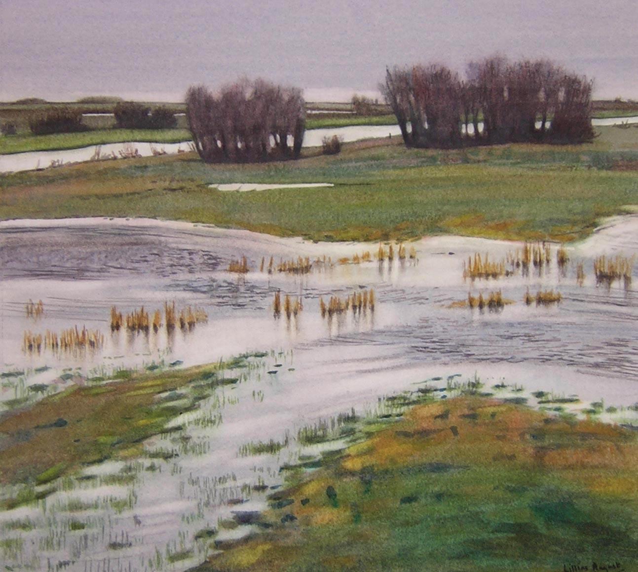 Fen flood 29 x 32
