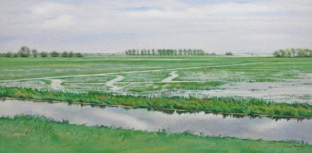 Floodlands 22 x 43cm
