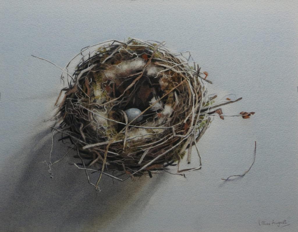 Nest egg 31.5 x 41.5cm