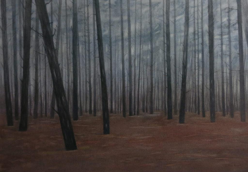 Pine mist 30 x 44cm