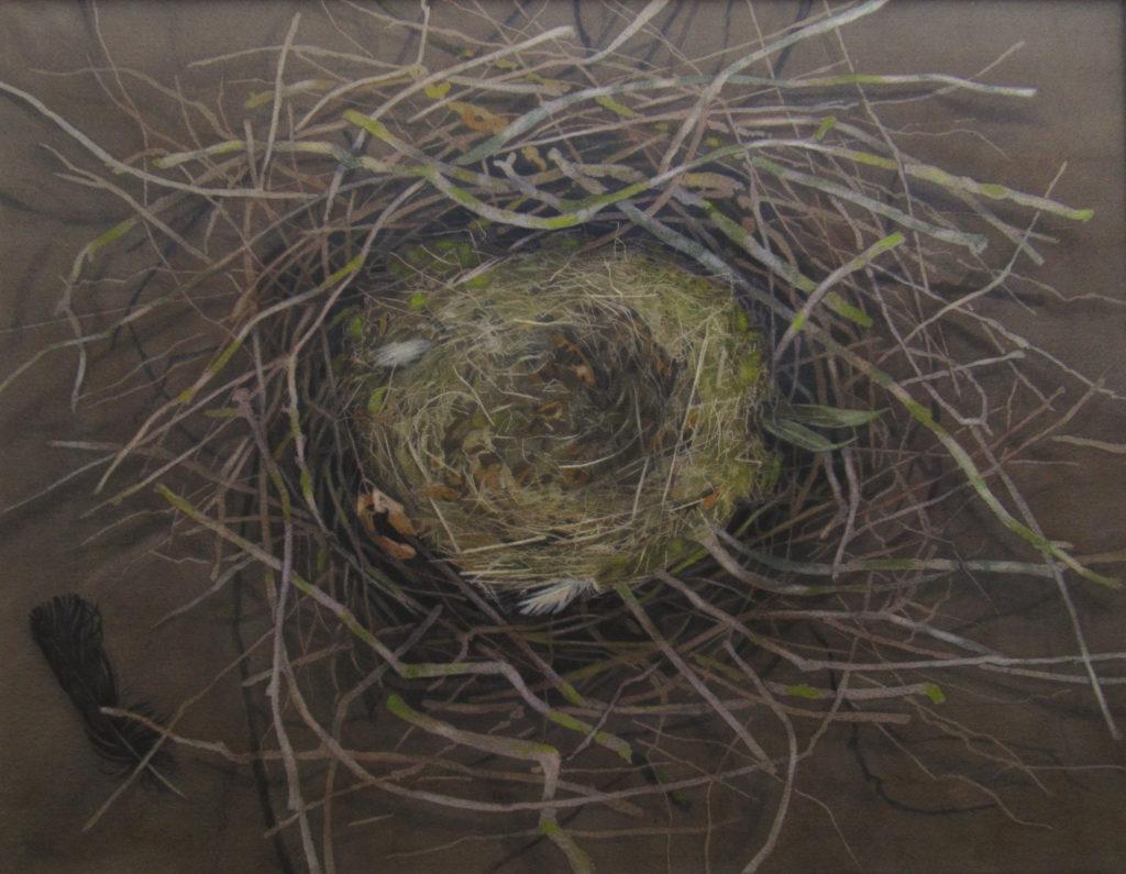 Rook's nest 70 x 56cm