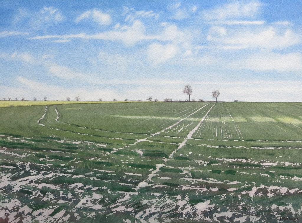 Snow lines I 30 x 39cm