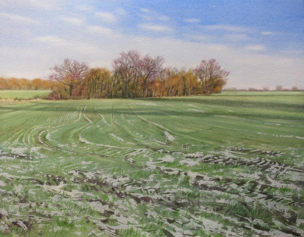 Snow lines II 33 x 44cm