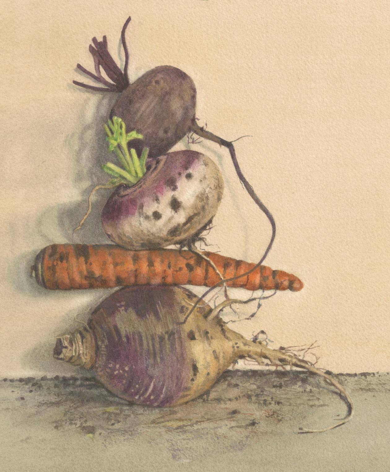 Dirty root veg, gicleé print 20 x 16.5cm
