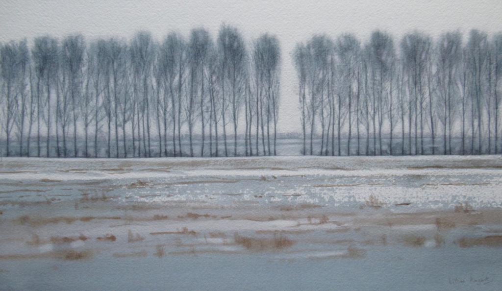 Winter poplars 23.5 x 40cm